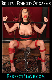 Kirsten Price in Bondage