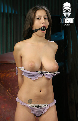 Tied to sybian